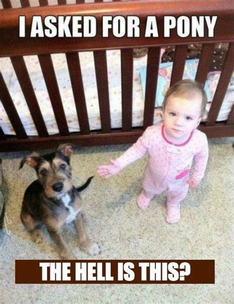 Funny Child Memes - 20 of the best baby memes ever number 7 is brilliantly cute cools and fools
