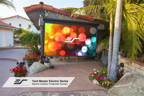 diy backyard  projector screen yard master