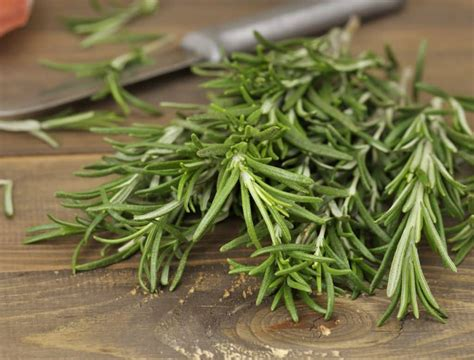 rosemary  thyme spiceography showdown spiceography