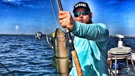 grouper goliath bait gear giant savage swimbait huge lure does