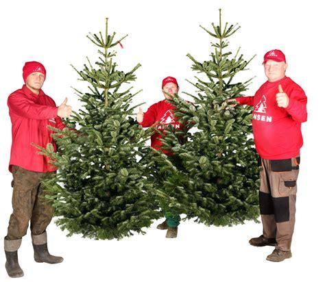 tannenbaum bestellen tannenbaum hamburg lieferservice weihnachtsbaumschlagen weihnachtsbaum kaufen weihnachtsbaum