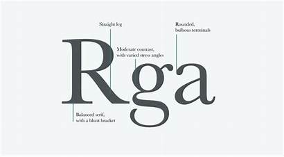 Serif Transitional Features Classification Typeface Typography Letterform