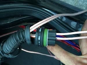 Kabel Durch Leerrohr : kabel durch leerrohr ziehen kabel ziehen swalif kabel durch ein leerrohr ziehen die perfekte ~ Orissabook.com Haus und Dekorationen
