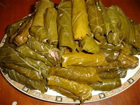 stuffed grape leaves arabic food recipes  english