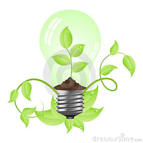 bulb with plant inside royalty free stock photo image