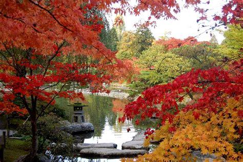 seattle japanese garden gardens parks wa washington gov autumn glamorous must visit jkl wallpapers hd
