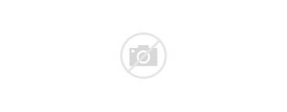February Sign Banner Colorful Brush Illustration Strokes