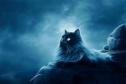 Fantasy Cats Abstract Wallpapers Cat Desktop Ulthar