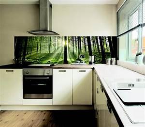 Küchenrückwand Glas Foto : k chenr ckwand glas motiv ~ Michelbontemps.com Haus und Dekorationen