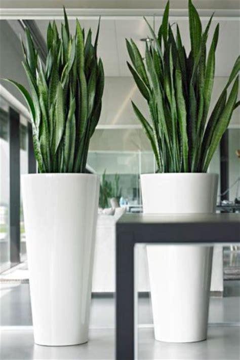 large floor vases 24 floor vases ideas for stylish home d 233 cor shelterness