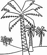 Palm Tree Coloring Trees Pages Coconut Drawing Date Outline Easy Line Sheet Lot Sheets Template Ikids Beach Getdrawings Clipart Palms sketch template