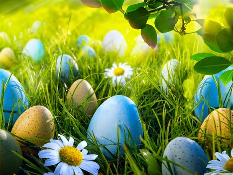 Animated Easter Bunny Wallpaper - happy easter 2015 easter wishes 2015 easter bunny