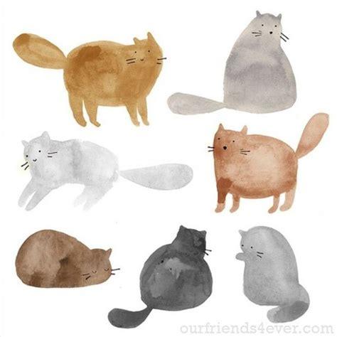 exclusive  cat language bible odd cat behavior