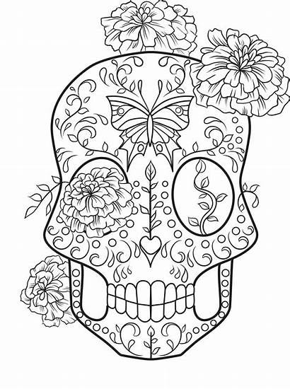 Skull Coloring Sugar Pages Colouring Rocks Adult