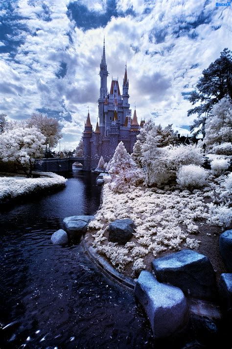 walt disney world winter wonderland lake buena vista flo flickr