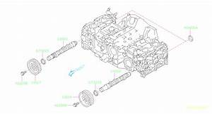 2010 Subaru Forester Engine Camshaft  Left   Timing  Belt
