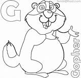 Gopher Coloring Coloringfolder Printable Colouring sketch template