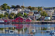 Canada holidays: Family camping in Nova Scotia is a wild ...