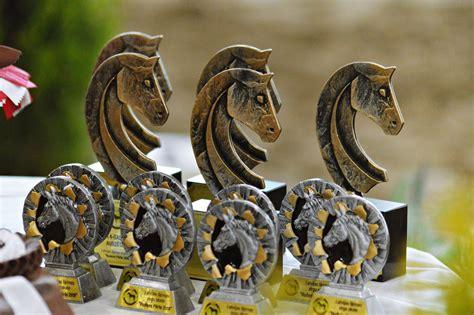 Atskats uz Latvijas šķirnes zirgu skati