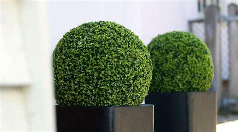 Topiary Buxus Ball Realistic Artificial Green Bush