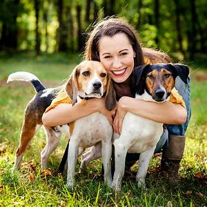 How To Prevent Lyme Disease In Your Pets