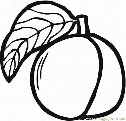 Peach Coloring Pages Peaches Printable Clipart Tree