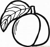 Peach Coloring Peaches Printable Clipart Clip Outline Appricots Coloringpages101 Google Odwiedź Drawings Popular Clipartmag Brzoskwinia Kolorowanka Szukaj 87kb 984px 1024 sketch template