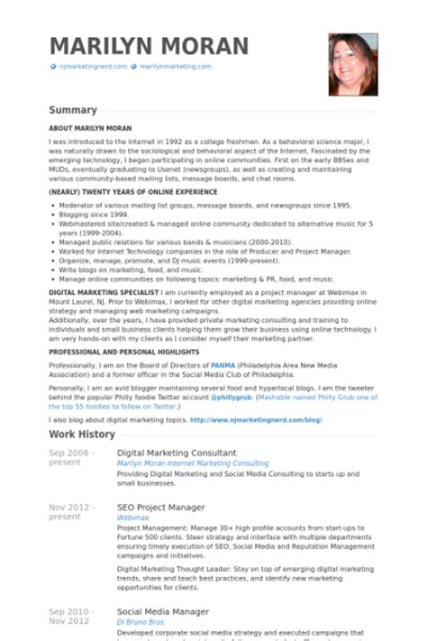 digital marketing consultant resume sles visualcv