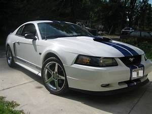 2002 Mustang GT with new paint and wheels - Ford Mustang Forum