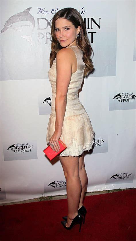 Sophia Bush Hottest Bikini Pictures Sizzling Photo Wallpaper Pics Photoclickz