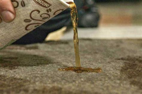 tache de café sur canapé tissu comment nettoyer une tache de café sur moquette ou tissu