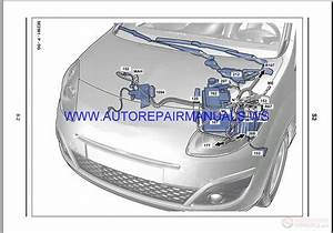 Renault Scenic 2 Workshop Wiring Diagram