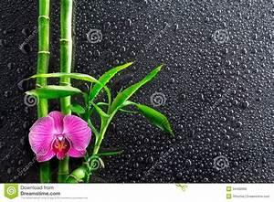 Orchidee Klebrige Tropfen : tropfen orchidee und bambus auf schwarzem lizenzfreie ~ Lizthompson.info Haus und Dekorationen
