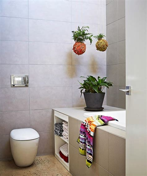 plants  bathrooms  indoor plants   bathroom