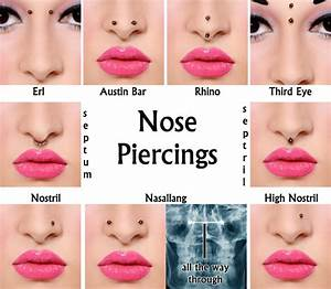 Types Of Nose Piercings