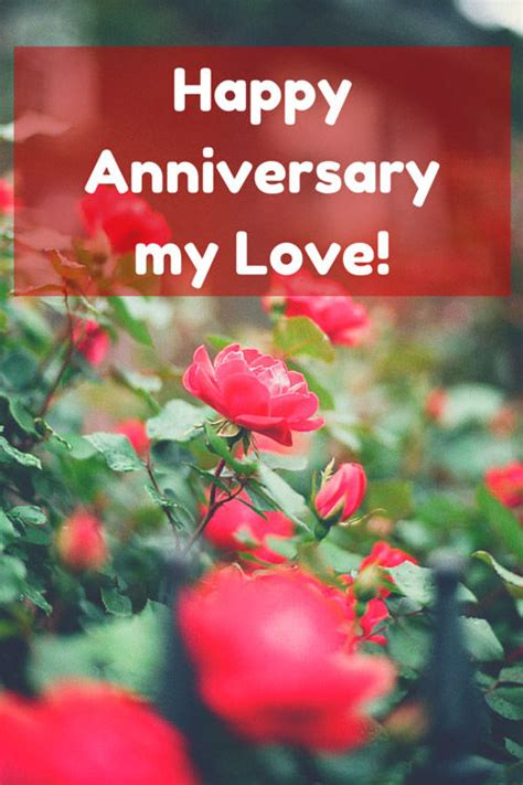 happy anniversary  love pictures   images