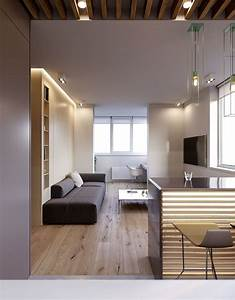 variety, of, minimalist, apartment, designs, which, suitable, to, apply, for, young, families