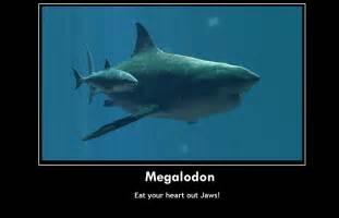 Funny Megalodon Shark