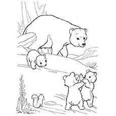 HD wallpapers coloring page panda bear