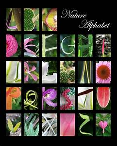 nature alphabet digital art by laila kujala With letters nature photography art