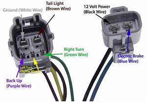 Tundra Trailer Hitch Wiring Diagram