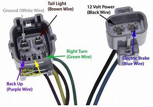 2011 Tundra Trailer Wiring Diagram Workoutdiagrams Enotecaombrerosse It