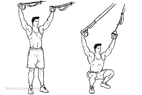 trx suspension straps overhead squat illustrated