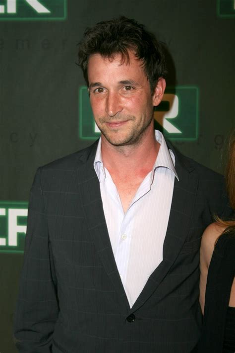 Cat Love: noah wyle background