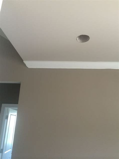 Sherwin Williams Mega Greige with Sherwin Williams anew