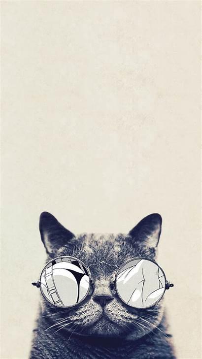 Cat Iphone Cool Wallpapers Backgrounds Pixelstalk