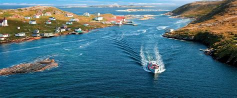 do newfoundlands shed more than labs the top 10 attractions in newfoundland and labrador keep