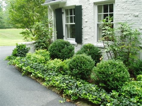 small shrubs for front yard this looks nice and seems way low maintenance excellent plants i can t kill front walk