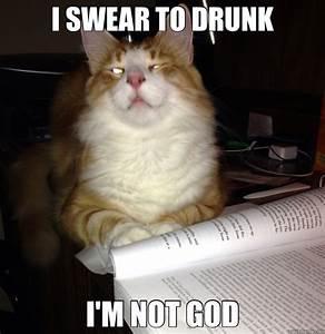 I SWEAR TO DRUNK I'M NOT GOD - Drunk Cat - quickmeme
