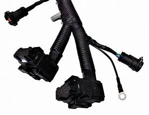 Fuel Injector Ficm Harness For 2003